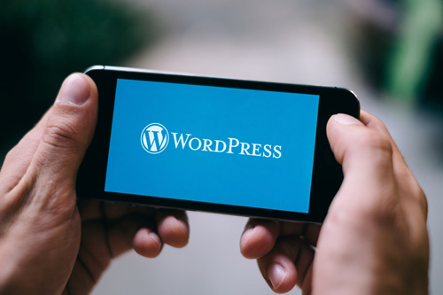 intègre tes épingles sur WordPress - Cédric Corneloup, ton guide jusqu'au bout du tunnel